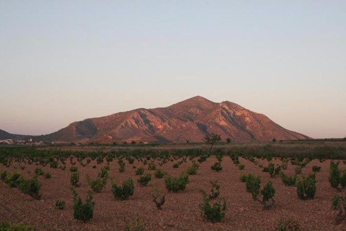 Galería fotográfica de Murcia